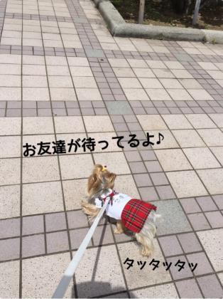 fc2blog_20160627094008ab3.jpg