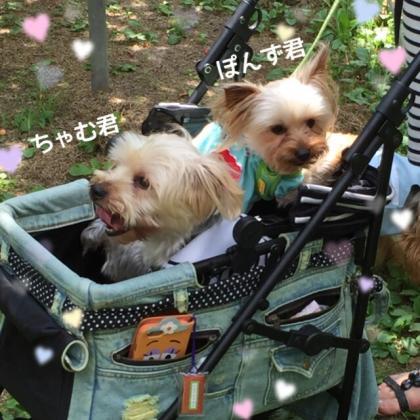 fc2blog_20160627094146a46.jpg