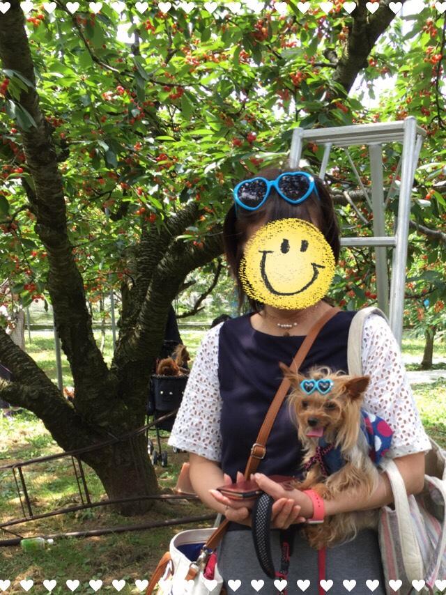 fc2blog_20160630084019c0e.jpg