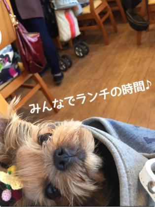 fc2blog_20160630084025001.jpg