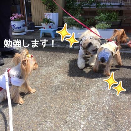 fc2blog_2016070209095494a.jpg