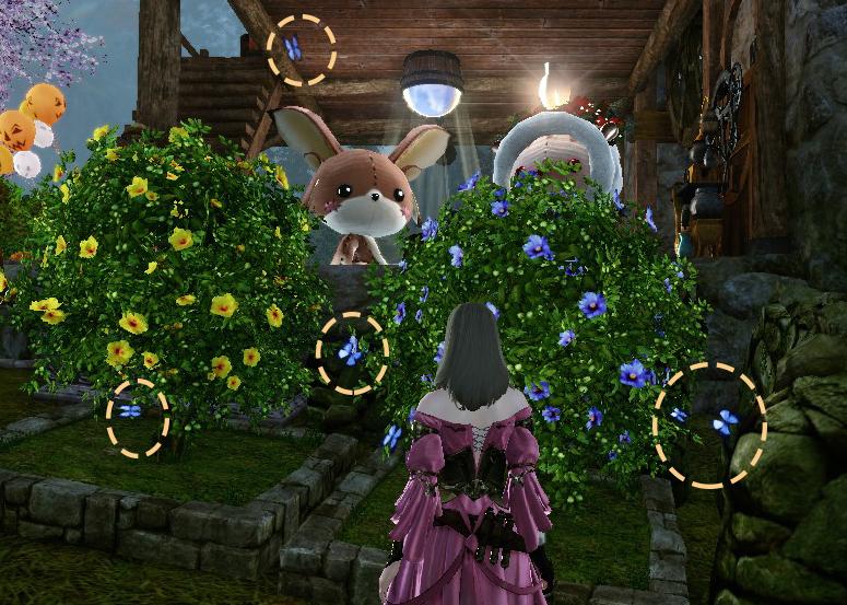 花壇の青い蝶々