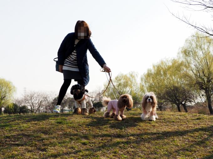 blog_P3267106.jpg