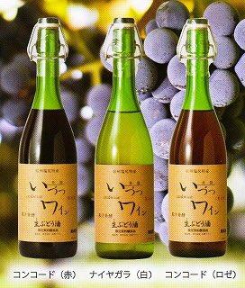 井筒果汁発酵生ワイン