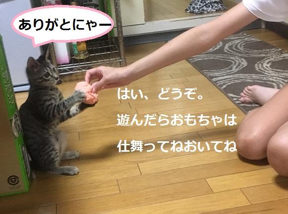 160622013.jpg