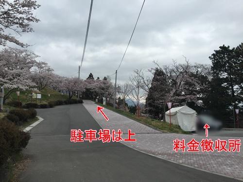 大法師公園9
