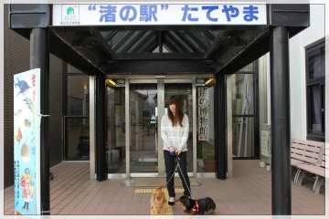 H28042415Tateyama Nagisa Cafeteria
