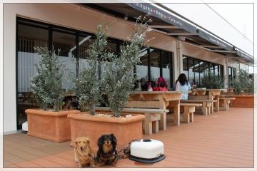 H28042417Tateyama Nagisa Cafeteria