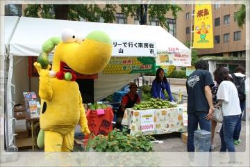 H28052811TVK収穫祭