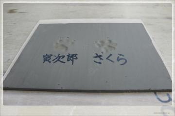 H28061827笹谷窯
