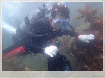 H28061907沖ノ島海底清掃