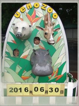 H28063002上野動物園