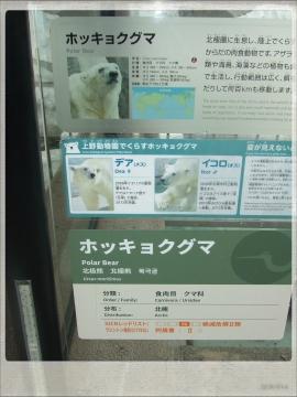H28063006上野動物園