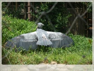H28063009上野動物園