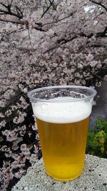10411桜
