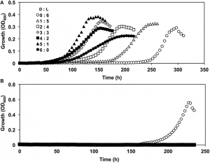 Growth curves of Nautella strains in the presence of D, L-valine
