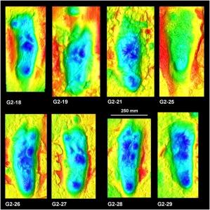Laetoli third person footprint