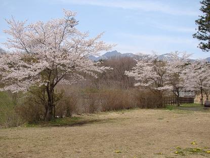 世笹川隣接公園