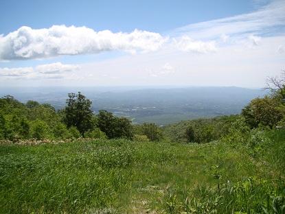 山から見下ろす