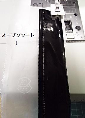 DSC_0049 (289x400) (2)