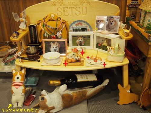 節ちゃん祭壇