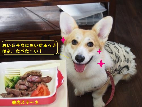 鹿肉ステーキ、やったぁ