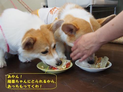 陽菜ちゃんにとられるっ!