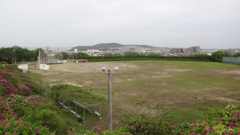 DSC00058 (800x450)