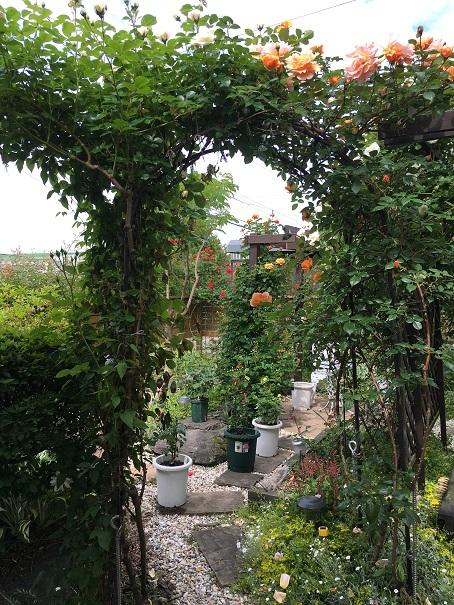 庭の入口_2016062401