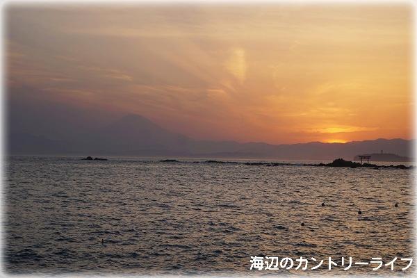 20160511231136a10.jpg