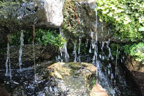 階段脇には湧水が流れ出た小さな滝