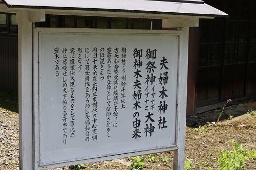 夫婦木神社看板