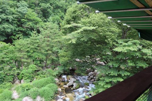 昇仙峡めん処 樹光庵 テラス席2階からの眺め (1)