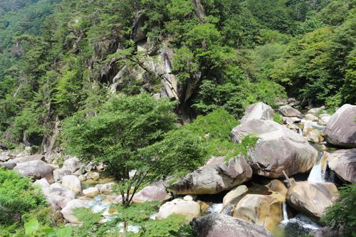 金渓館 からの眺め  渓谷 (3)