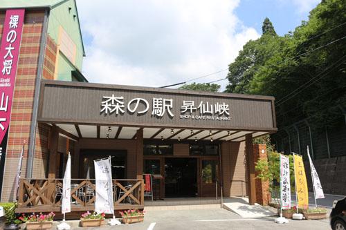 影絵の森美術館  森の駅入口