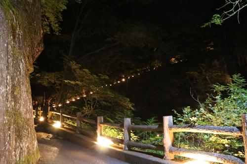 昇仙峡 仙娥滝 ライトアップと竹灯籠のあかり 仙娥滝から金渓館までの道のり (2)