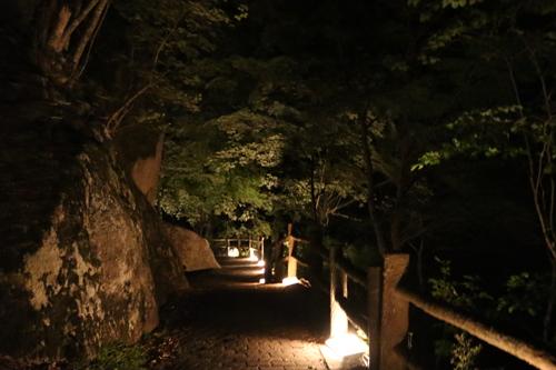 昇仙峡 仙娥滝 ライトアップと竹灯籠のあかり 仙娥滝から金渓館までの道のり (8)