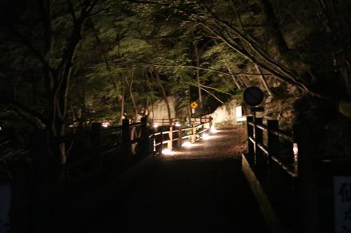 昇仙峡 仙娥滝 ライトアップと竹灯籠のあかり 仙娥滝から金渓館までの道のり (10)