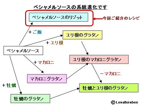 ベシャメルソースの系統進化その2