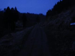 IMGP0433.jpg