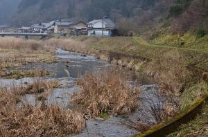 田総川沿いの道