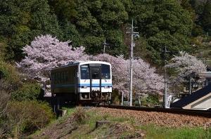 尾関山公園のトンネルから出てきた三江線の電車
