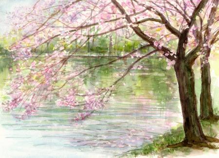 WEB太田ヶ谷沼の桜