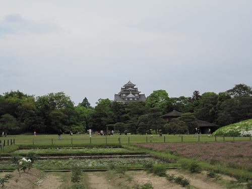後楽園→岡山城