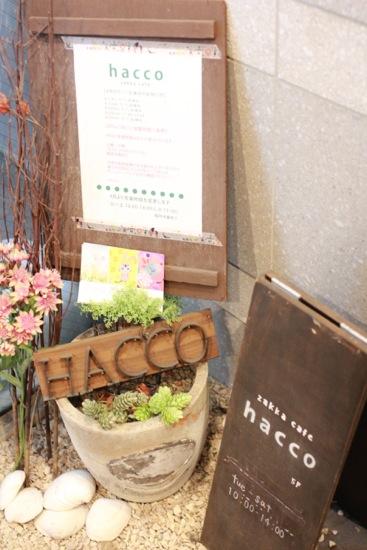 hacco2.jpg