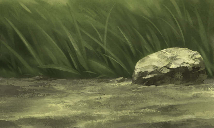 湿原blog02