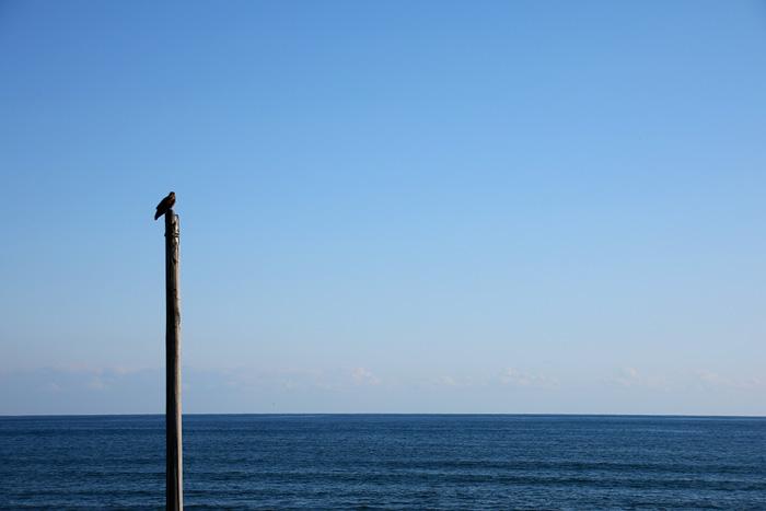 scenery1603_04.jpg