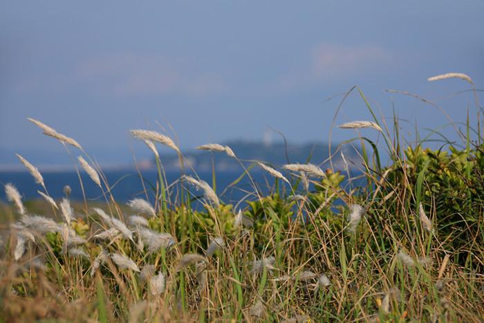 scenery1603_14.jpg