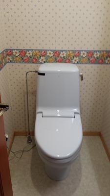 トイレ掃除1