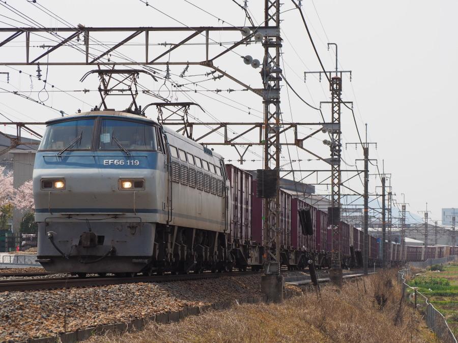 EF66 119 20160409